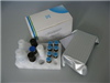 大鼠C反应蛋白ELISA试剂盒