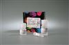 78833NE-PER核蛋白-胞漿蛋白抽提試劑盒