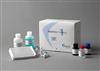 大鼠巨噬细胞炎症蛋白1αELISA试剂盒