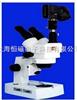XTZ-V图像体视显微镜