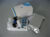 猪皮质醇ELISA试剂盒