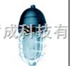 SBCFD7隔爆型防爆照明灯具专业