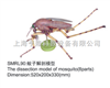 动物12bet12bet|蚊子12bet12bet|蚊子12bet