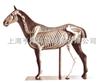 动物12bet12bet|马12bet12bet|马12bet