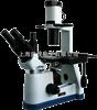 BM-37XB倒置生物显微镜